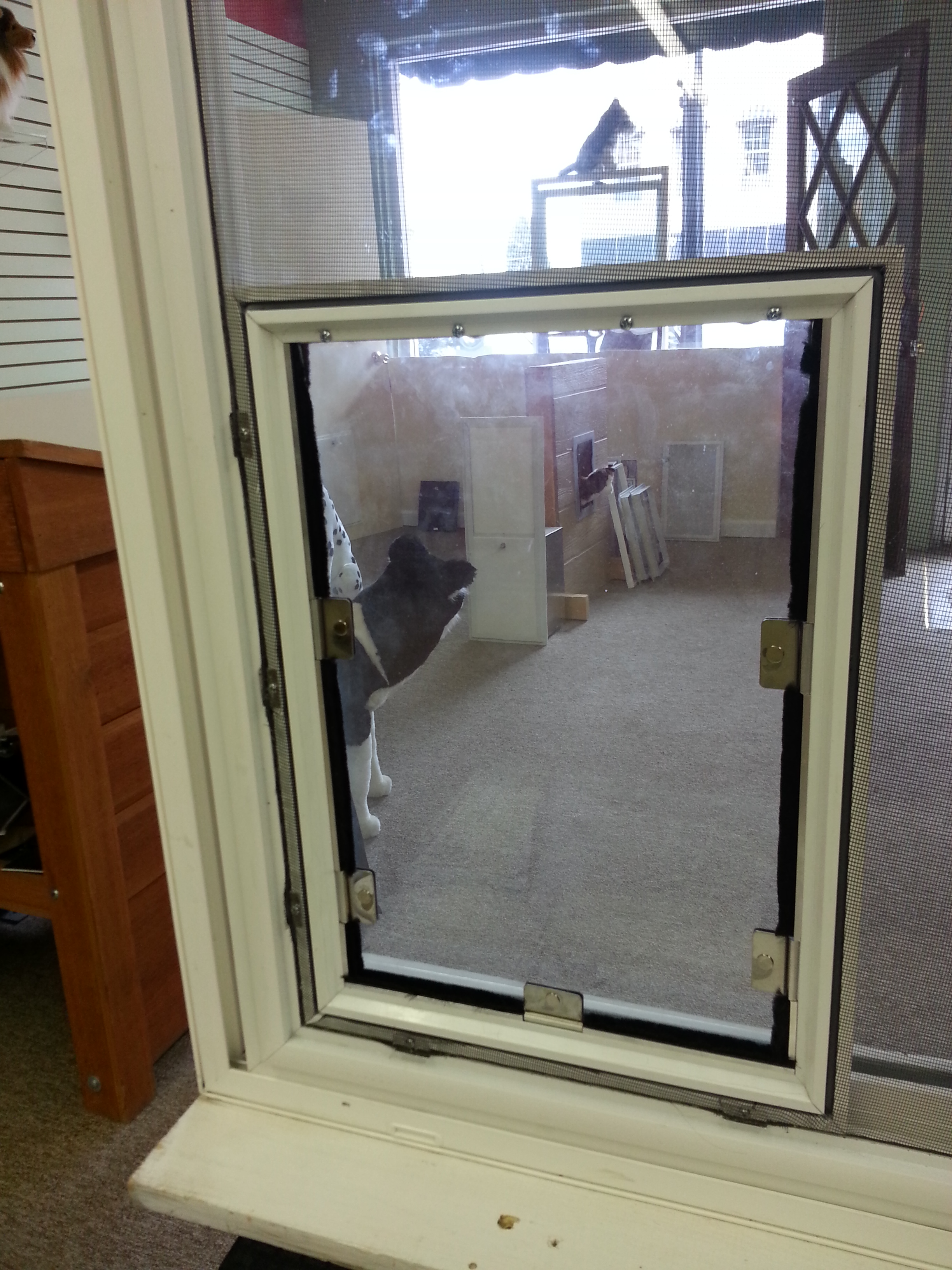 Cat door for inspiration gallery from screen for Universal sliding screen door